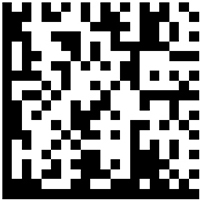 Disable Micro QR Code