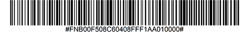 Enable MICR E 13B Barcode