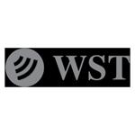 logo_wsTechnologies
